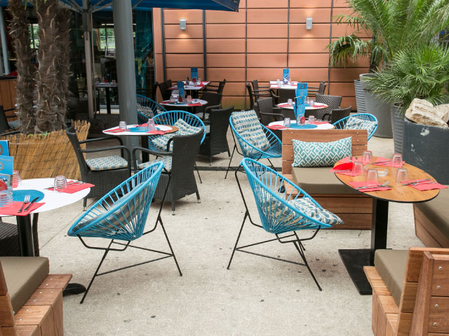 Café Suelta Verde